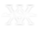 white twenty-five nation logo