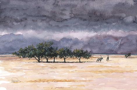 End of Dry Season in Etosha 12x16 lo res