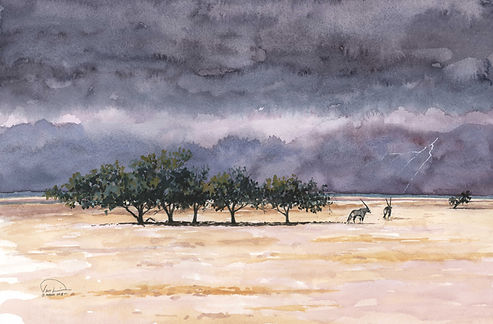 End of Dry Season in Etosha 12x16 lo res
