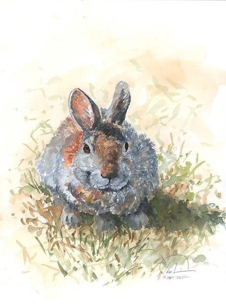 Bunny #5 9x12 lo res.jpg