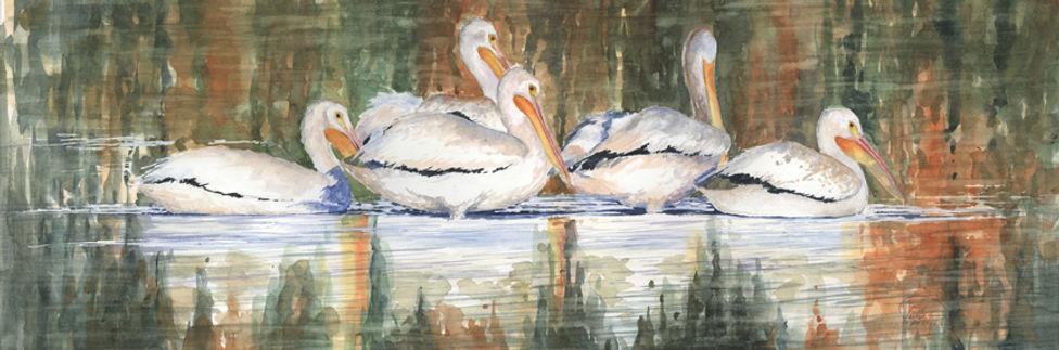 pelicans 9x24 lo res.jpg