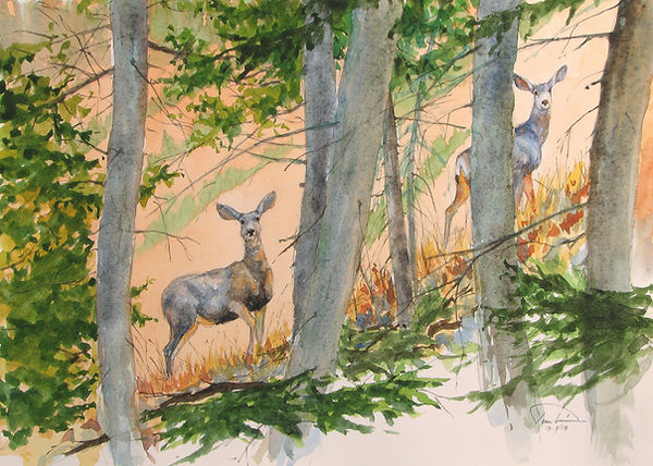 #10 Paul Tunkis - Mule Deer Startled - 1