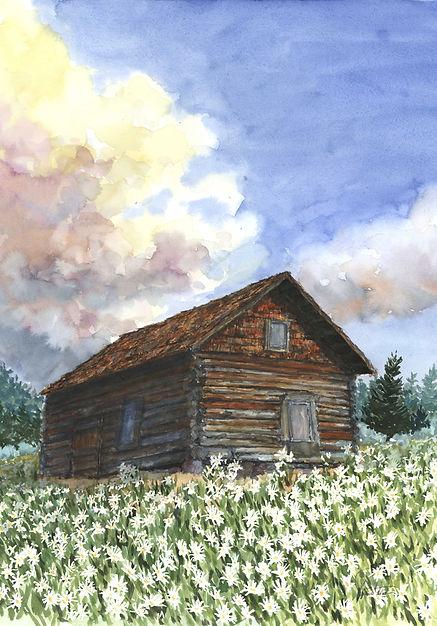 daisy cabin#1 12 lo res.jpg