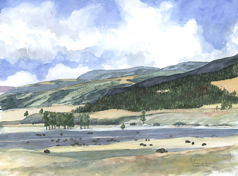 Yellowstone Bison Herd 9x12 lo res.jpg