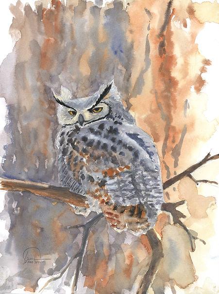 Owl 9x12 lo res.jpg