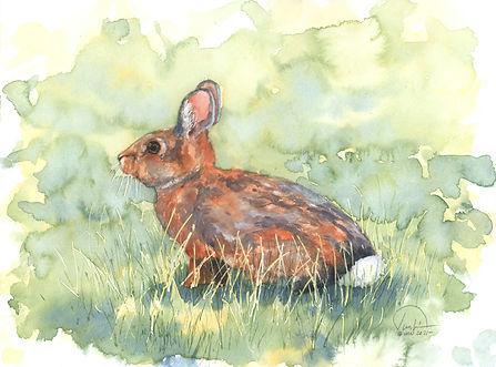Bunny #3 9x12 lo res.jpg