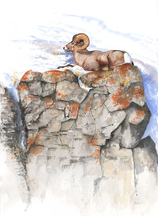 sheep on cliff 22x30  lo res.jpg