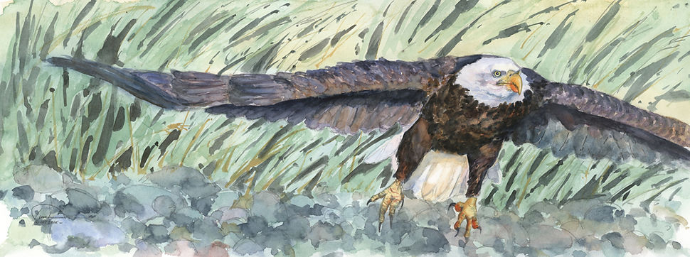 Eagle Flight - 9x24 - lo res - copyright