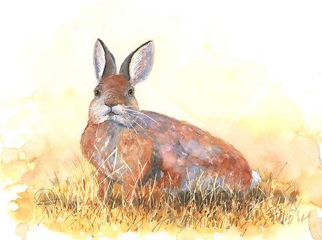 Bunny 9x12 lo res.jpg