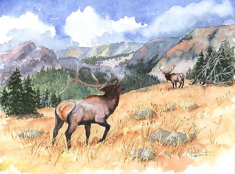 elk encounter 9x12 lo res.jpg