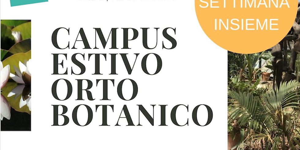 Terza Settimana al Campus Orto Botanico Palermo