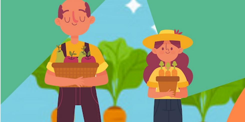 L'orto di Pino il contadino. Tra colori e sapori