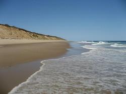 National Sea Shore 1.jpg