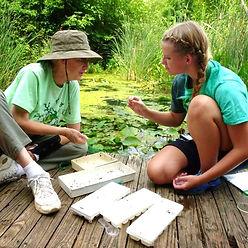 two women on small dock examining aquatic organisms at ijams