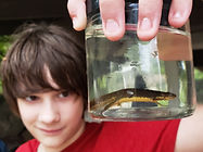 kid holding red-spotted newt in summer camp ijams