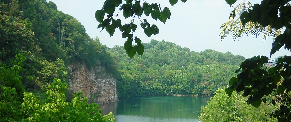 beautiful view of mead's quarry lake at ijams nature center
