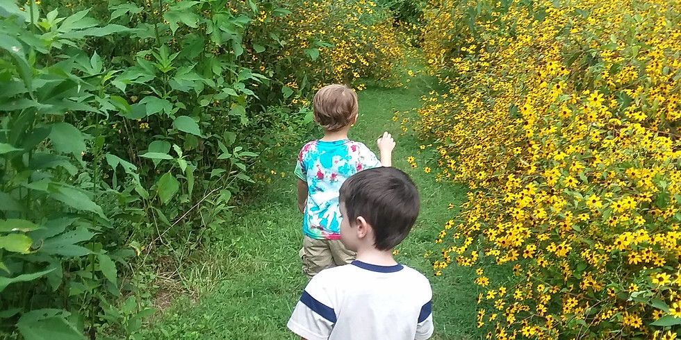 Nature Senses (Youth & Family Programs)