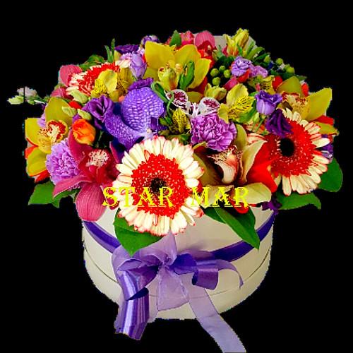 Доставка цветов в лыткарино многолетние цветы которые цветут все лето купить