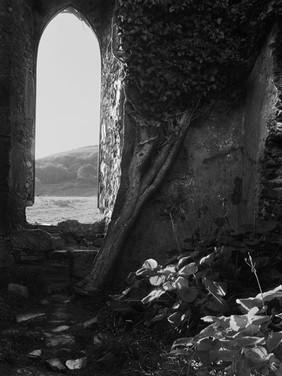 Castle Ruins II