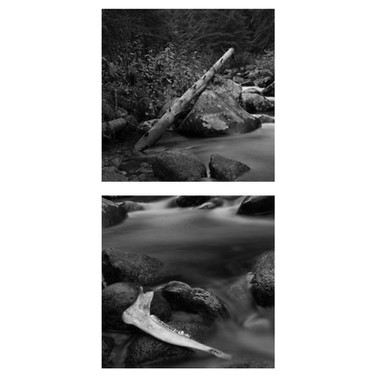 Stanley Hot Springs Diptych