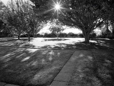 Whitman Massacre Memorial