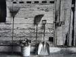 Barn Still-life