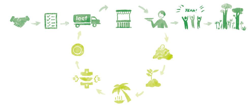 Palmblatt Teller Lebenszyklus