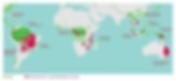 global_deforestation_map_1.png