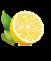 Citron PNG