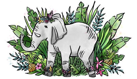 ECAMPANELLA_elephant_edited_edited.jpg