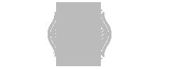 Metro-Fire-Logo.png
