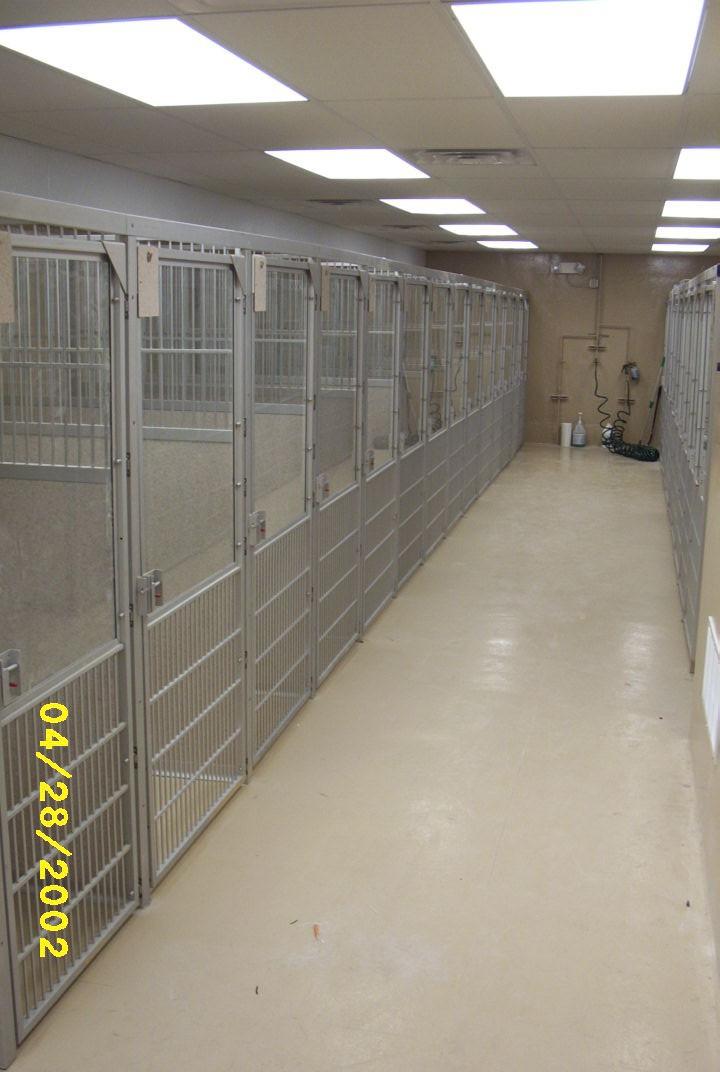 Animal Medical Center (1).jpg