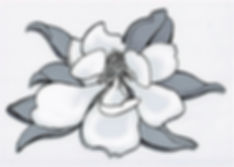 MagnoliaBWTONE_edited.jpg