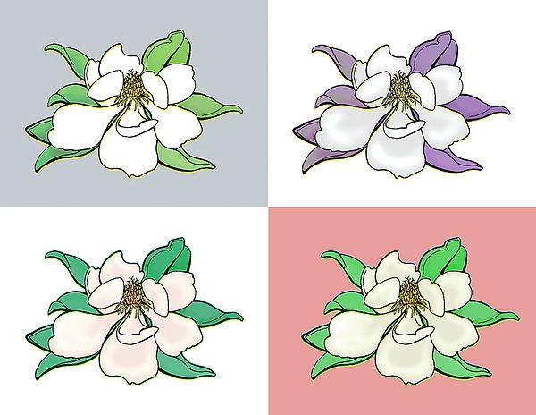 MagnoliaCompWEB.jpg