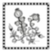 BUDS%20COMP%20CMYK_edited.jpg