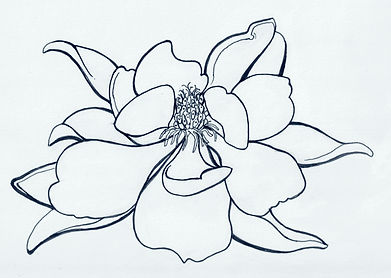 MagnoliaBWLine.jpg