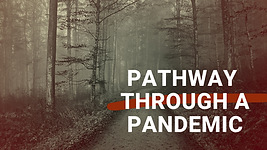 Pathway Through a Pandemic.png