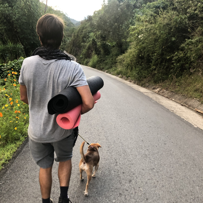 Angus Stephens, Co Founder of Create Space Retreats, walking his dogs in Costa Rica