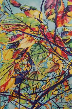 Bright leaves overhead