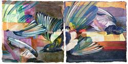 Magpies after Audubon