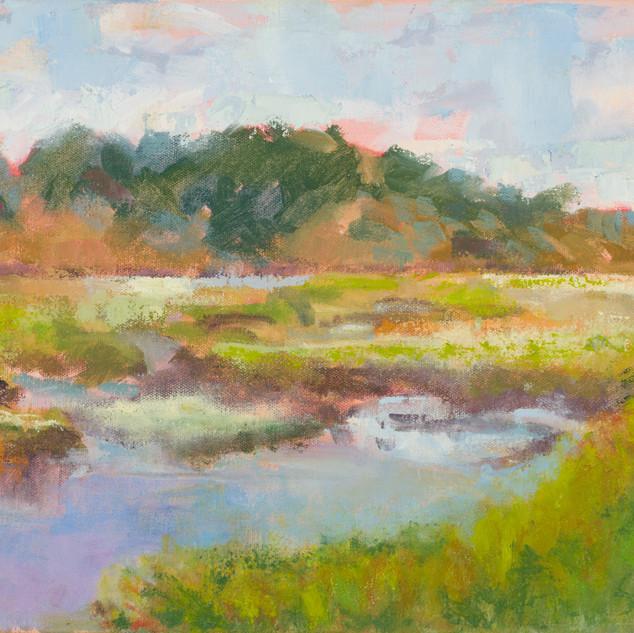 Marsh in Truro