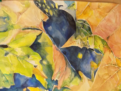 Leaf study 4