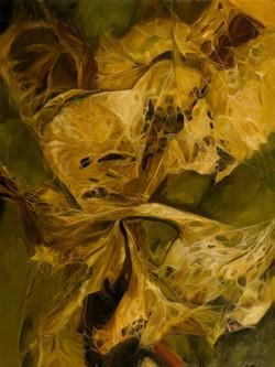 Dried Leaves