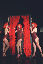spectacle cabaret - revue music hall.jpg