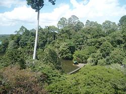 Malaisie 08_10 151