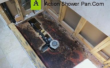 Mold In Shower Pan tile installer parker,co|custom tile installers-action shower pan