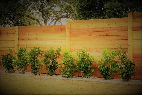 fence1 (3).jpg