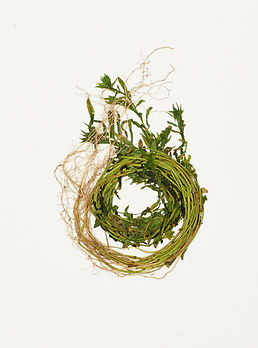 John Newling, Dear Nature (2018) (5) .jp