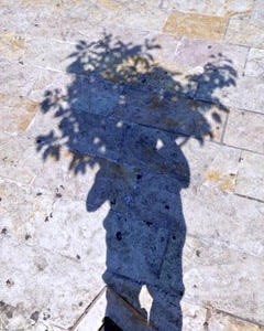 Self Portrait as Tree