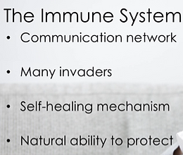 what is immune system group.png